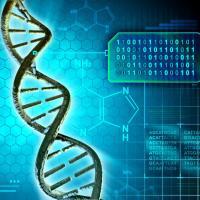 Longevity Research
