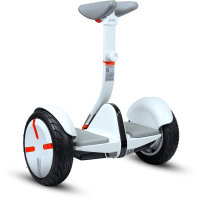 Personal Transport Devices