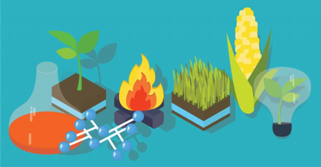 biofuels-cover
