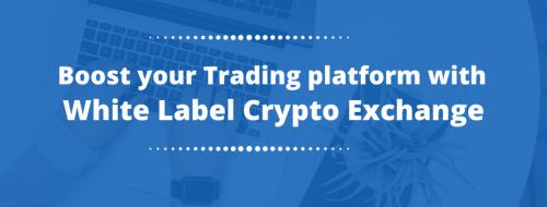 White label crypto exchanges