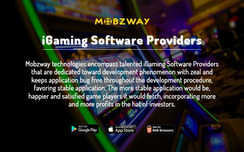 India's Top iGaming Software Provider Company | Online iGaming Software Solutions